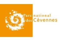 Journée d'échanges et de pratiques des enduits à la chaux en façade Cour du Château de Florac